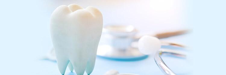 歯周病検査や歯周病の治療と歯周病予防まで行います